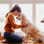 CURP para mascotas RUAC